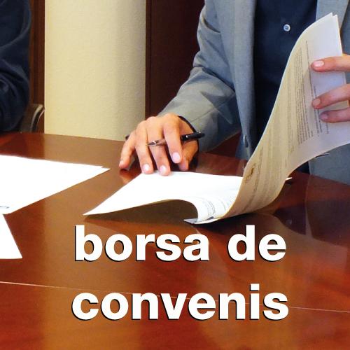 web_borsa-convenis.png
